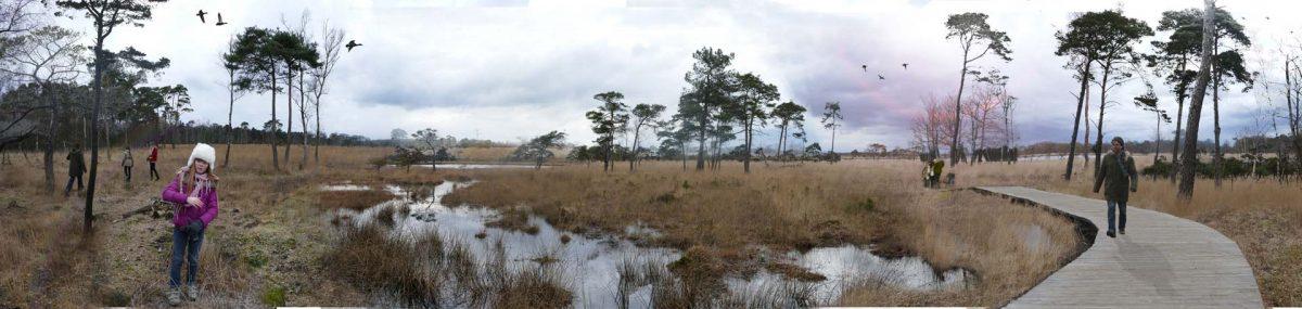 natuur-&-mens-landschapsontwikkeling-landchap