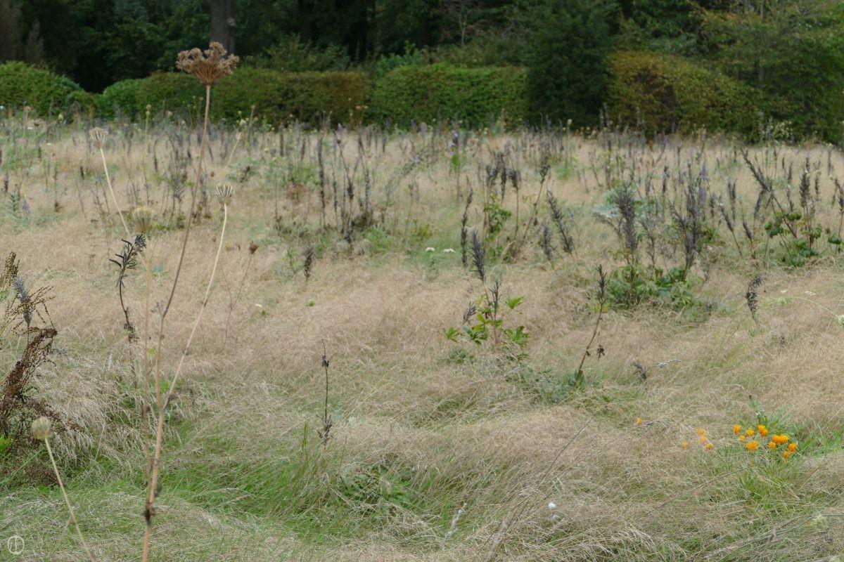 klimaattuin-natuurtuin-natuur-tuin-klimaat