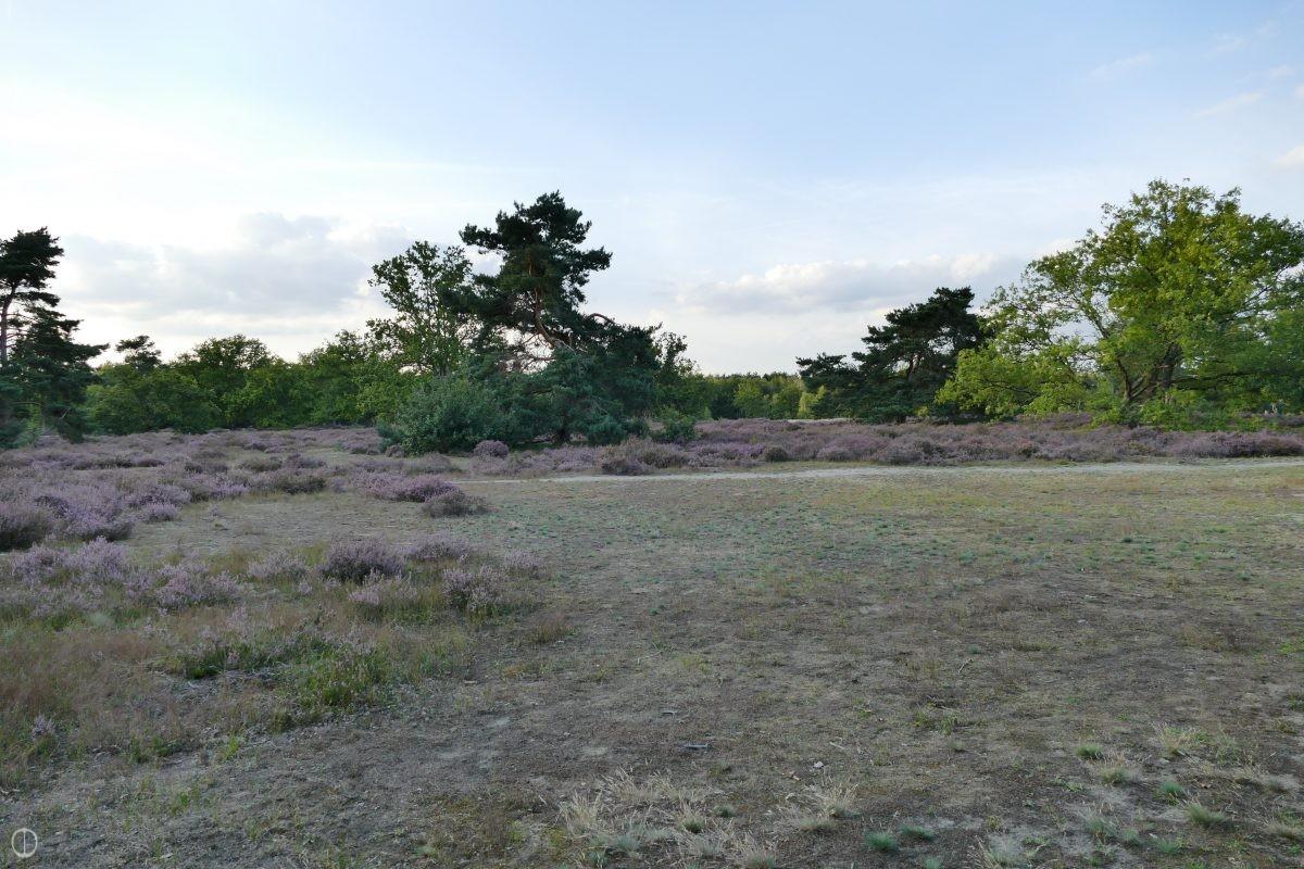 natuurtuin-natuur-tuin-klimaattuin-klimaat