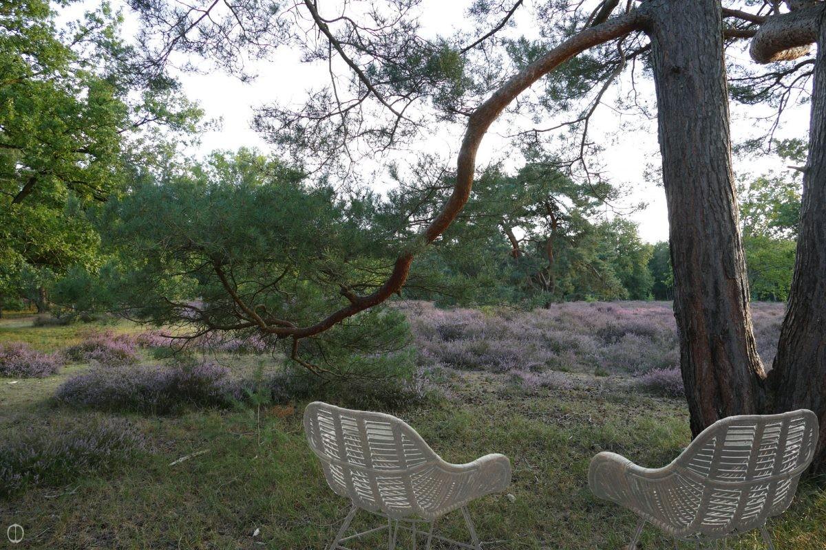 natuurtuin-natuur-tuinen-tuin-klimaat